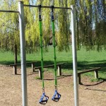 Spring Tune-Up Human Trainer Workout