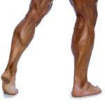 Top 7 Reasons You Aren't Gaining Leg Muscle