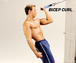 Bicep Curl with Suspended Training