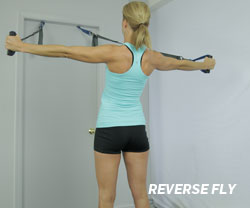Reverse Fly with Suspended Body Weight Training System