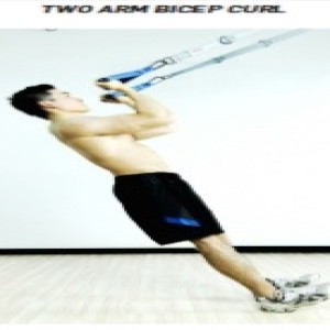 The Human Trainer 2 Arm Bicep Curl