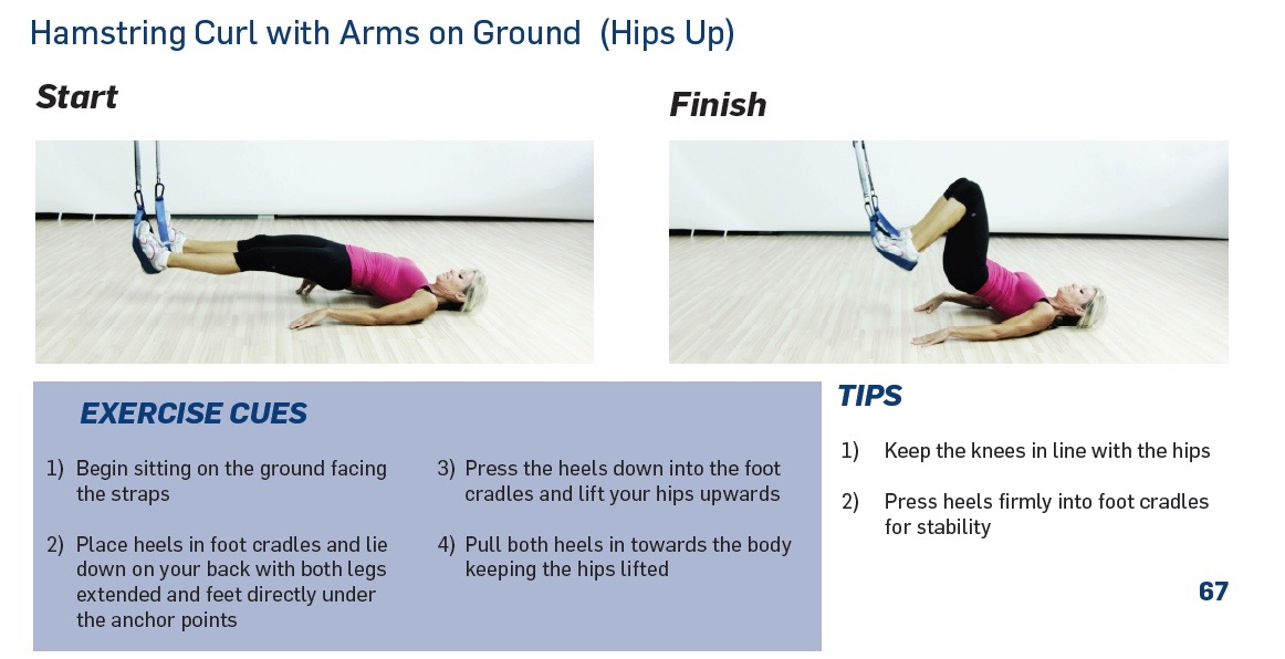 The Human Trainer Hamstring curl is a great postural leg exercise that builds strength in the back of the legs.