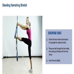 The Human Trainer Standing Hamstring Stretch builds balance and flexibility to help prevent injuries.