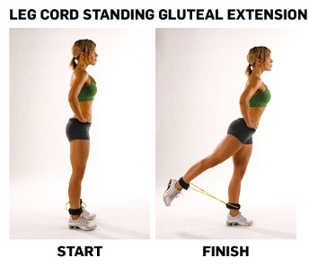 Legcord glute extension